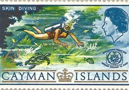 cayman islands skin diving