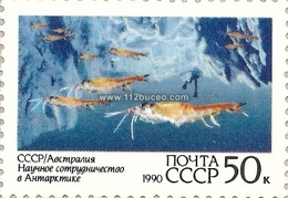 cccp ice diving 1990